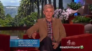 Funny Animal Videos Oct 28 2013